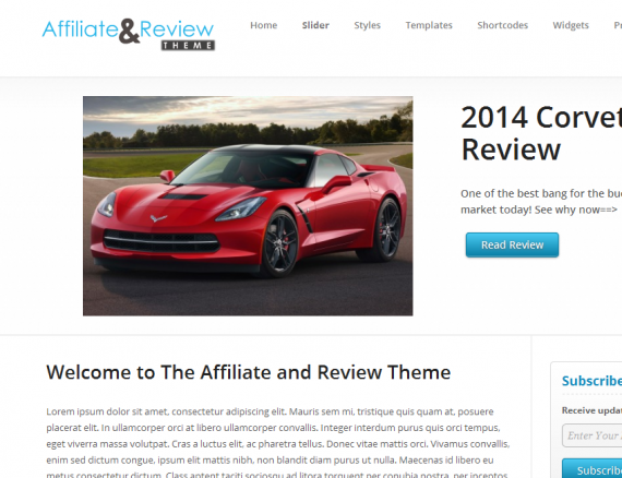 affiliate and review theme