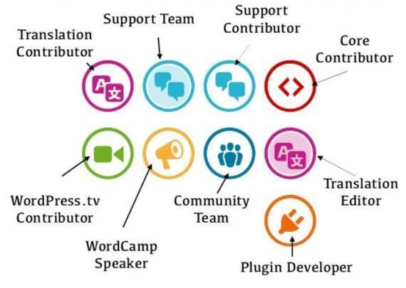 Responsibilities of Web Developer